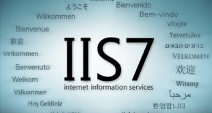 IIS启用父路径插图