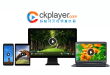 WP Video Player 插件插图