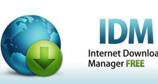 [v6.38]Internet Download Manager分段下载加速器缩略图